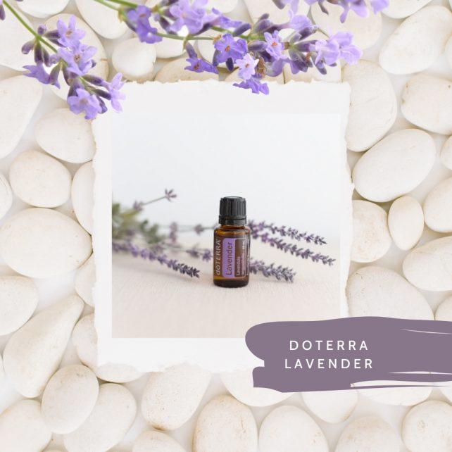 doTERRA Lavender EO